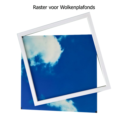 Led Fotoplafond Inleg Kader 595x595 - fotoplafond-kader