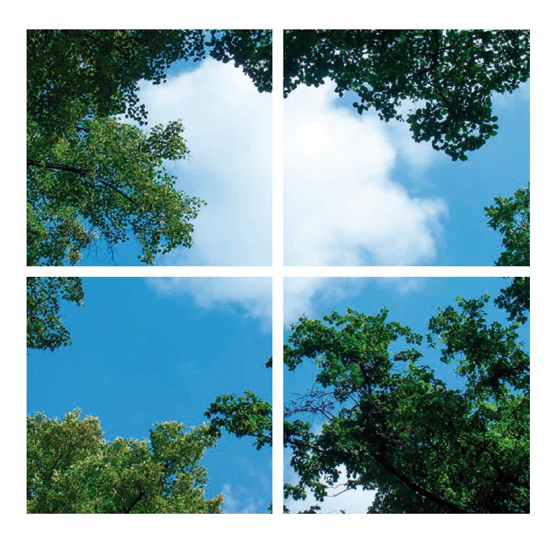 paneel-bomen-4