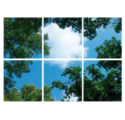 Led Bomenplafond 6 Panelen - paneel-bomen-6