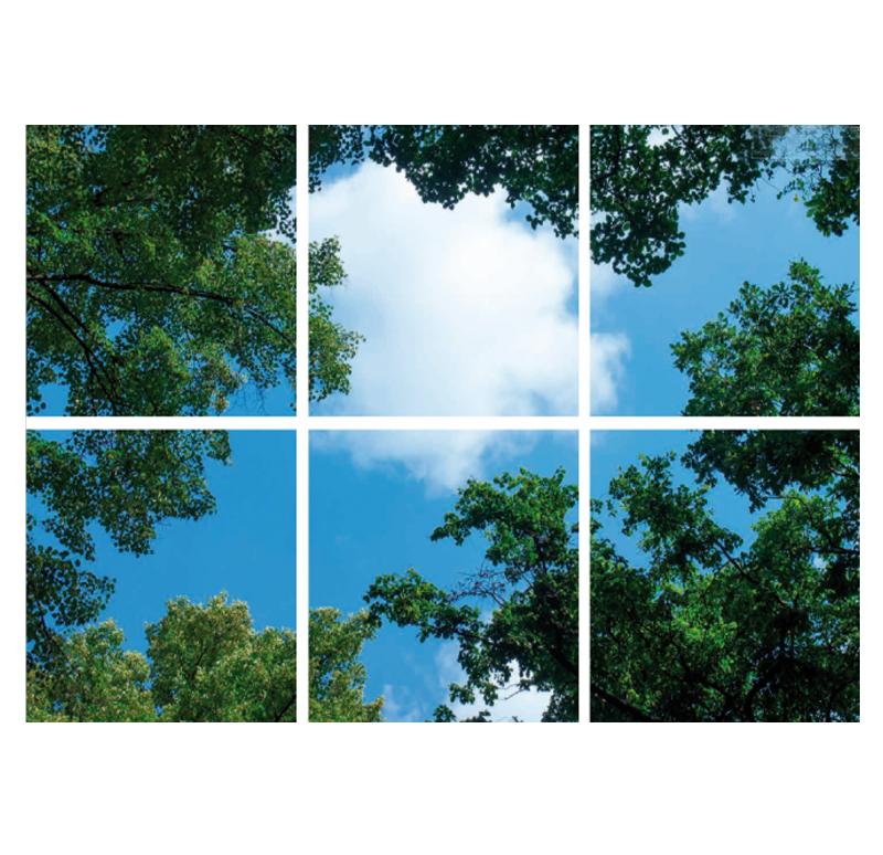 paneel-bomen-6