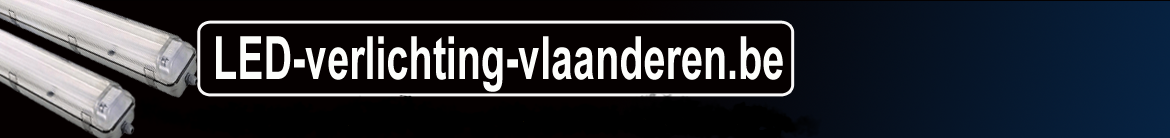 vlaanderen.be-new-2020-2.png